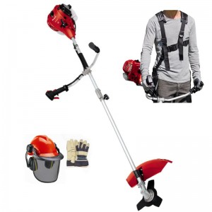 Einhell GH-BC Petrol Brushcutter + Free Kit (Special Limited Offer)