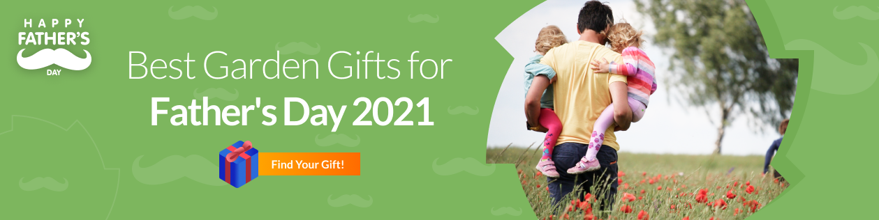Choose your Special Gift for Father's Day 2021
